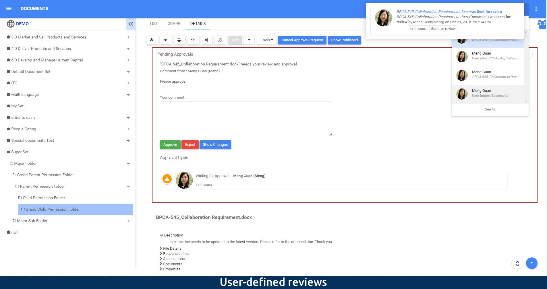 Revisiones definidas por el usuario